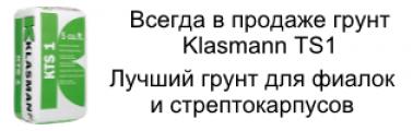 KLASMANN TS1